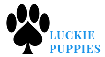 luckiepuppies.com